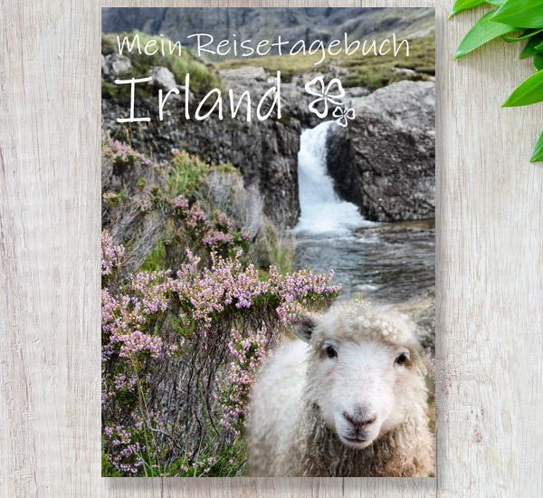 Reisetagebuch Irland - Skandinavien