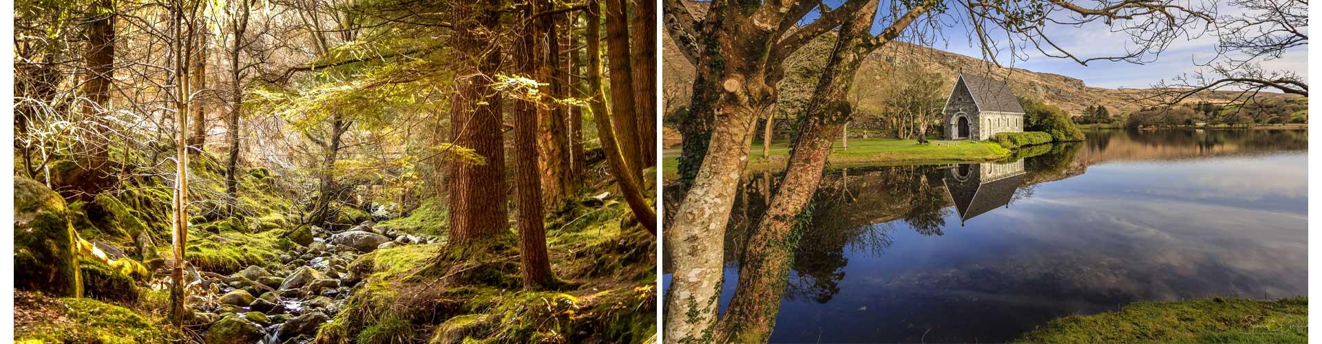 Irland Reisetagebuch Wald Hütte am See