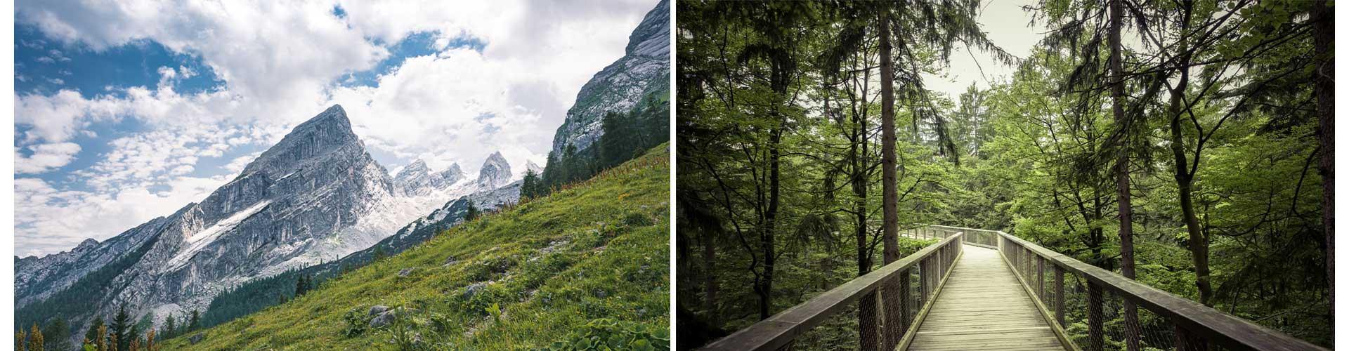 Doppelbild reisetagebuch deutschland selberschreiben watzmann alpen wald schwarzwald